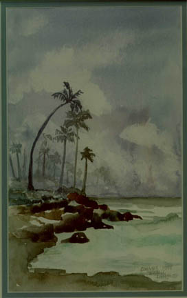 Dianne's watercolor of Kauai near Princeville