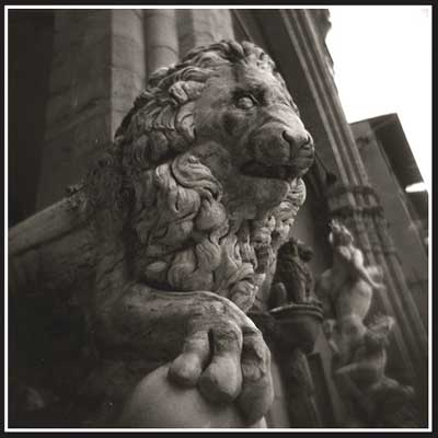 One very old lion still guarding the steps.